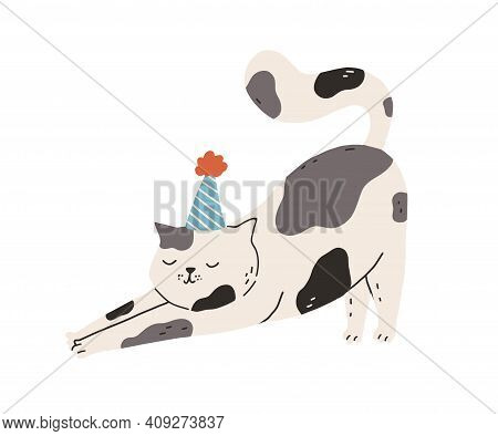 Cute And Funny Cat Stretching Itself Leaning On Front Paws. Adorable Lazy Kitty Wearing Party Hat On