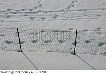 Wire Fence With Barbed Wire. On A Snowy Meadow Is A Fence With Metal Posts And Wire Mesh. View From