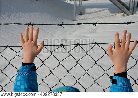 Wire Fence In Winter Rainy Day. Holding Barbed Wire With Small Hands. Knitted Gloves White Fingers.