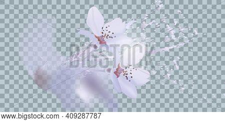 Bouquet Realistic Daffodil , Flowers Daffodil. Seasonal Sales