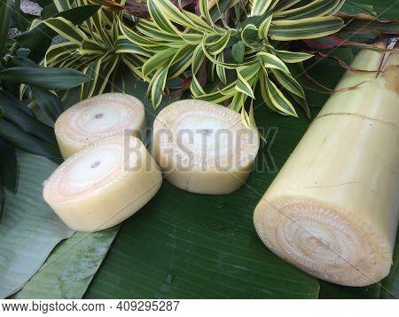 Prepare Equipment For The Fabrication Of Krathong For Loy Krathong Festival.