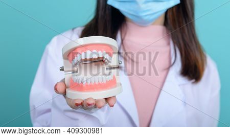 Dentist Woman Holding Tooth Model And Equipment On Blue Screen Background. Dental Care And Healthy T