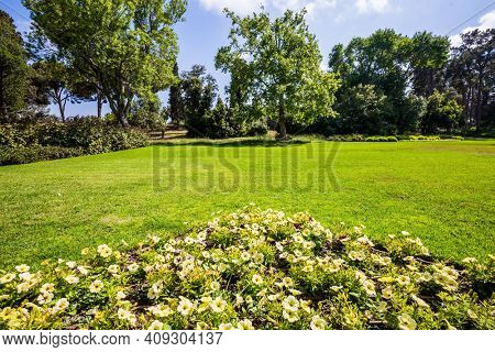 Israel.  Great walk in a clean well-kept park. Large green grassy meadow in the center of the park. The magnificent botanical park on the slopes of Mount Carmel