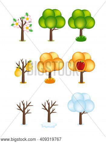 Set Of Cartoon Creative Vector Tree Icons In Different Seasons. Bare Tree, Snowy, Flowering, With Ye