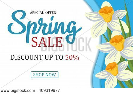 Spring Sale Background With A Beautiful White Daffodil Flower. Vector Illustration Template. Banners