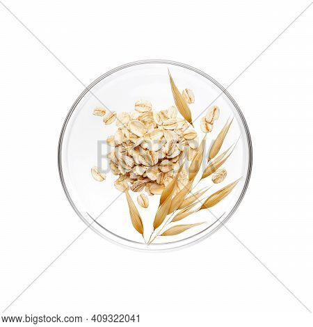 Pile Of Oatmeal And Its Plant On Petri Dish Over White Background