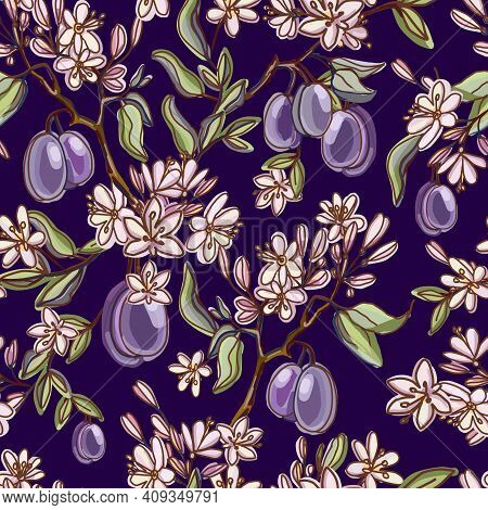 Seamless Pattern With Ripe Plums And Flowering Branches, Leaves On A Dark Blue Background. Fresh Fru