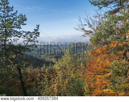 Panoramic View Of Colorful Vivid Deciduous Beech And Pine Tree Forest And Hills From Viewpoint Calle