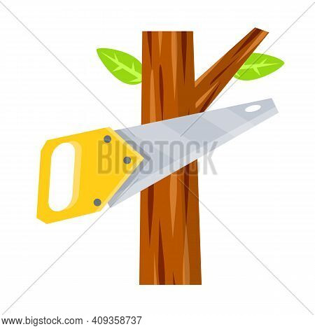 Saw Cut Tree Branch. Tool Of Lumberjack. Care Of Forest. Woodcutter Operation. Harvesting Of Logs. A