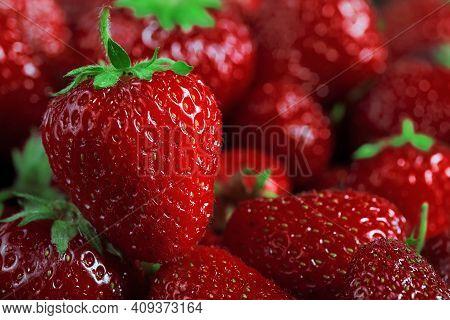 Big Fresh Ripe Strawberry Macro Photo Against Many Blurred Strawberries Background, Nobody