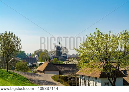 Small Dutch Village And Fruit Orchards With Spring Blossom Along Dam In Betuwe, Netherlands In Sunny