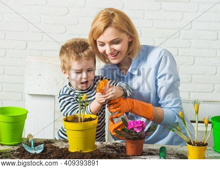 Family Planting. Mother And Son Grow Flowers. Child And Mother Spraying Spring Flower.