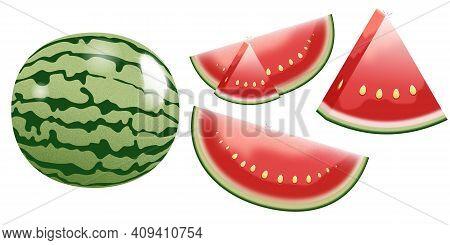 Ripe Juicy Watermelon Whole Half Quarter Segment. Realistic Watermelon Set.  Isolated In White Backg