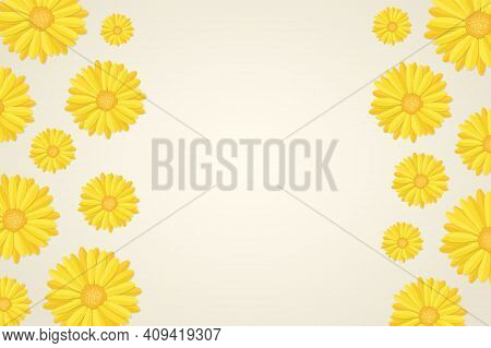 Top View Of Yellow Calendula Or Marigold Flower Buds Pattern In Flat Style, Floral Botanical Frame B