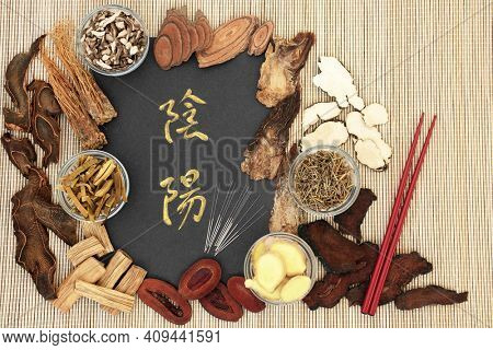 Chinese acupuncture needles with yin and yang herbs used in traditional herbal medicine with calligraphy script on bamboo. Alternative holistic health care. Top view. Translation reads as yin yang.