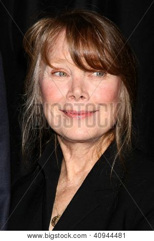 LOS ANGELES - JAN 12:  Sissy Spacek arrives at the 2013 LA Film Critics Awards at InterContinental Hotel on January 12, 2013 in Century City, CA