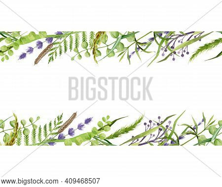 Floral Seamless Border. Lavender And Meadow Herbs Watercolor Frame Illustration. Natural Organic Her