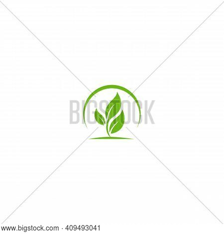 Leaf. Leaf Logo. Leaf Vector. Leaf Logo Vector. Leaves Logo. Leaf Vector Logo. Vector Leaf Logo. Nat