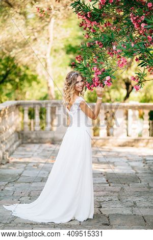 A Bride On The Site Near The Ancient Church In Prcanj, Sniffing Pink Flowers On The Lush Branches Of