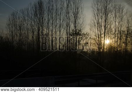 The Sunrise Near Our House Was Especially Interesting One Chilly Morning . Fog Moves Through Trees A