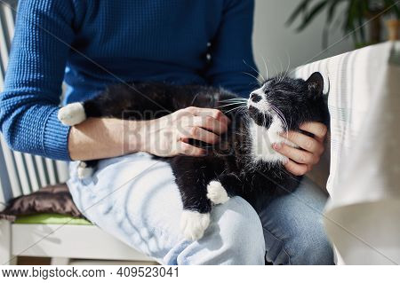 Young Man Stroking His Cat At Home During Sunny Day. Themes Trust, Care And Friendship Between Peopl