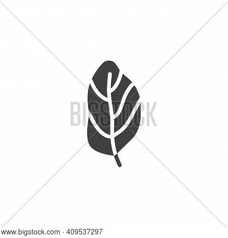 Basil Leaf Vector Icon. Filled Flat Sign For Mobile Concept And Web Design. Basil Herb Glyph Icon. S