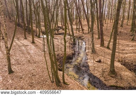 A Forest Stream Flowing Through A Deep Ravine.\ndeep Ravine. Steep Slopes Covered With Deciduous Tre