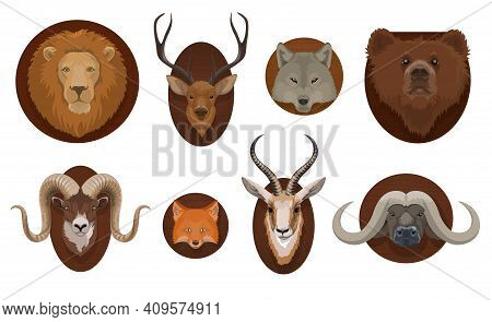 Hunting Trophies, Wild Animal Head Mount. Lion, Wolf And Grizzly Bear, Forest Deer, Mountain Ram And