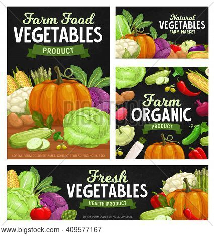 Fresh Vegetable Food Chalkboard Banners With Cartoon Veggies. Vector Farm Tomato, Pepper Or Chilli,