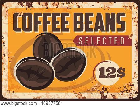 Coffee Beans Vector Plate. Selected Roasted Grains On Old Rusty Metal Plate. Coffee Seeds On Ferrugi