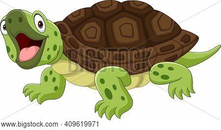 Cartoon Funny Turtle Isolated On White Background