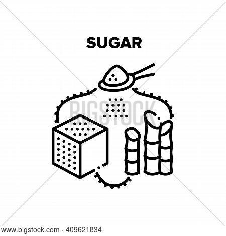 Sugar Vector Icon Concept. Sugar Cube And Sand Heap On Spoon, Castor And Sugarcane Plant. Unhealthy