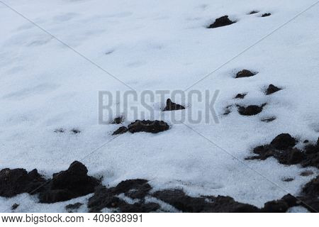 The Snow Melts In Late Winter - Spring Is Coming Concept