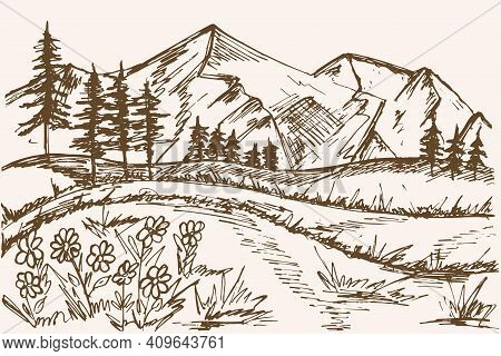 Mountain Sketch. Vector Mountains And Forest. Christmas Trees Against The Background Of Mountains. F