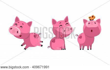 Set Of Funny Piglets, Cute Humanized Pig Farm Animal Character Cartoon Vector Illustration