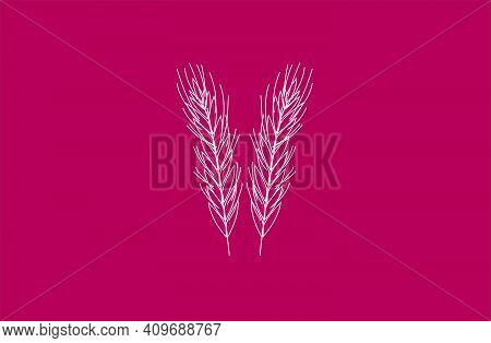 Vector Wheat Spikelet Logo Background Symbol Icon