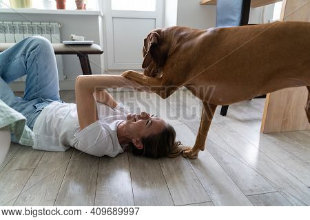 Happy Woman Owner Playing With Her Lovely Vizsla Dog Lying On The Floor At Home. Female Owner Foolin