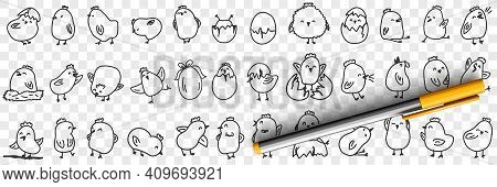 Small Chicks On Farm Doodle Set. Collection Of Hand Drawn Cute Funny Positive Chicks Eating Hatching