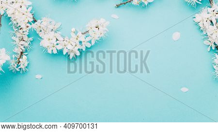 April Floral Nature. Spring Blossom And May Flowers On Blue. For Banner, Branches Of Blossoming Cher