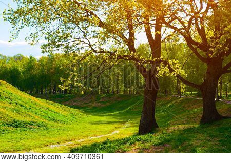 Spring landscape,spring sunrise in the spring city park,green spring trees lit by light,spring park landscape,spring nature, spring natural background,spring trees,spring sunny park,spring park landscape,beautiful spring park