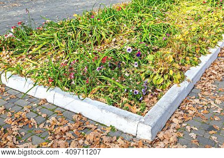 Flower Bed With Different Colorful Flowers And Dry Fallen Leaves On City Street In Sunny Autumn Day