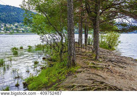 Vesleøye Island Nature In Town Fagernes Fylke Innlandet Norway.