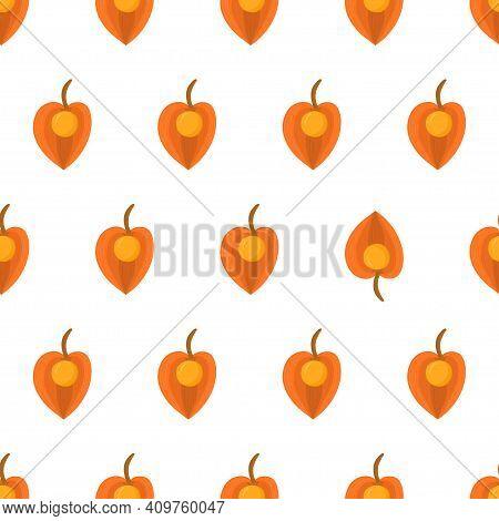 Seamless Pattern With Physalis, Eye Catching Element. Orange Fruit Inca Berry. Organic Textile. Vect