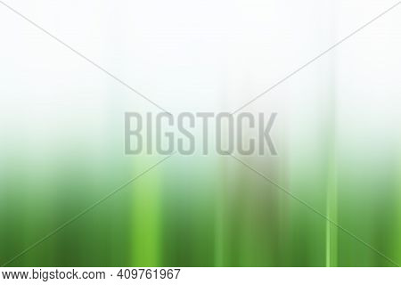 White And Green Gradation Color Abstract Illustration Backgrounds. Soft Green Background. White Back