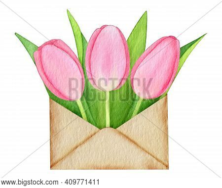 Pink Tulips In A Craft Envelope Isolated On White Hand-drawn Watercolor Illustration