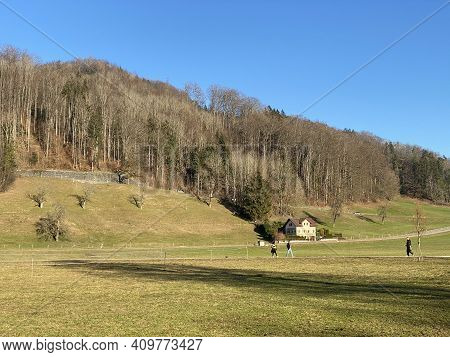 Natural Landscape With Early Spring Pastures And Mixed Forests In The Area Of Lake Türler Or Türlers