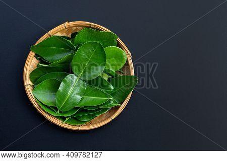 Bergamot Kaffir Lime Leaves Herb Fresh Ingredient
