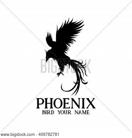 Phoenix Design Vector. Illustration Phoenix Logo Vector