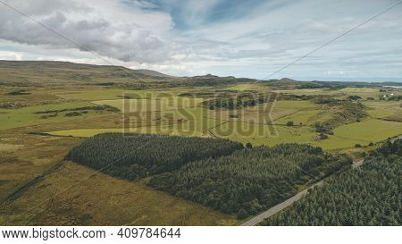 Pine forest at green valley aerial. Nobody nature landscape. Amazing greenery trees at countryside. Rural farmlands at road. Port town Ellen, Islay Island, United Kingdom, Europe. Cinematic drone shot