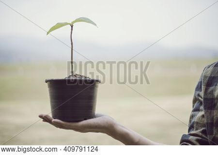 Young man was holding a seedling to prepare to plant a tree, Preserving or loving the environment or